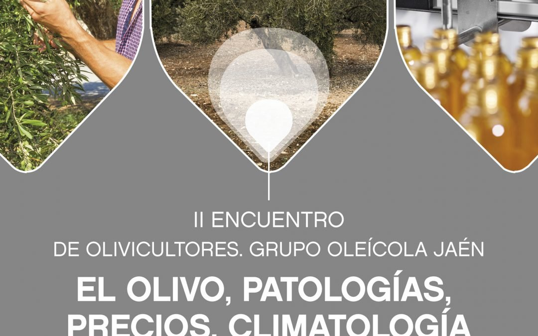 Programa II Encuentro de Olivicultores