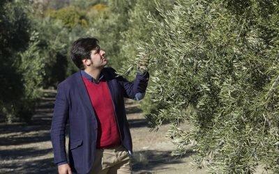 Carlos Nogales | Asesor técnico en explotaciones olivícolas